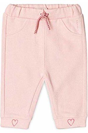 Esprit Kids Baby Girls' Knit Pants Trouser, (Pastel 312)