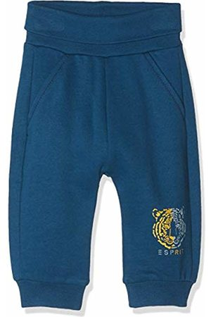 Esprit Kids Baby Boys' Knit Pants Trouser, (Dark Ocean 482)