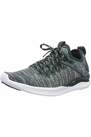 Puma Women's Ignite Flash Evoknit WN's Competition Running Shoes, (Ponderosa Pine 16)