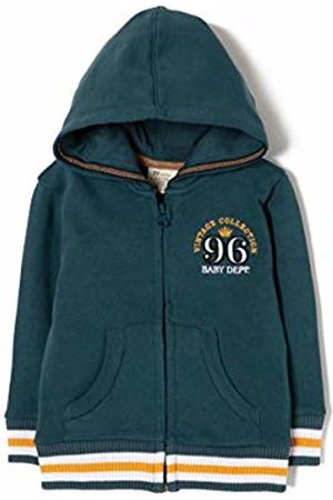 ZIPPY Baby Boys' Ztb0204_455_4 Hooded Jacket, (Majolica 565)