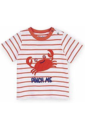 Hatley Baby Boys' Short Sleeve Graphic Tees T-Shirt, (Silly Crustacean)