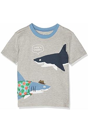 b262d1b0aa3 Hatley Boy's Short Sleeve Graphic Tees T-Shirt, (Sharp Dressed Shark)