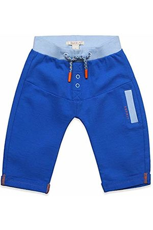 Esprit Kids Baby Boys' Knit Pants Trousers, (Electric 445)