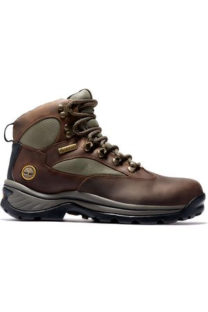 Timberland Chocorua trail gore-tex® hiker for women in , size 3.5
