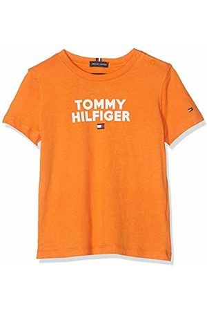 Tommy Hilfiger Baby Boys' Logo Tee S/s T-Shirt, (Russet 800)