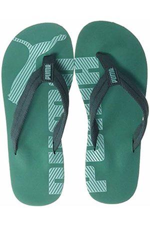 Puma Unisex Adult's Epic FLIP V2 Beach & Pool Shoes, (Ponderosa Pine-Cadmium 32)