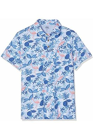 Izod Men's Dockside Flamingo Print Polo Shirt, ( Revival 464)