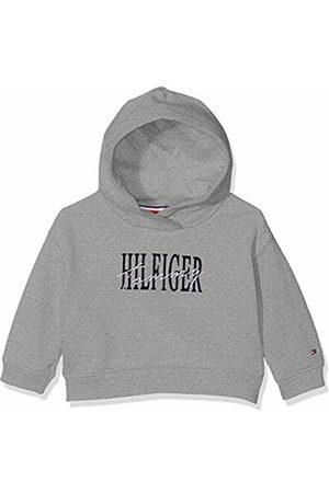 Tommy Hilfiger Baby Girls' Essential Graphic Logo Hoodie ( Heather 004)
