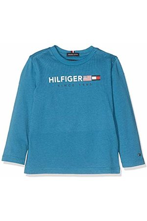 Tommy Hilfiger Baby Boys' Flags Graphic Tee L/s T-Shirt, Saxony 491
