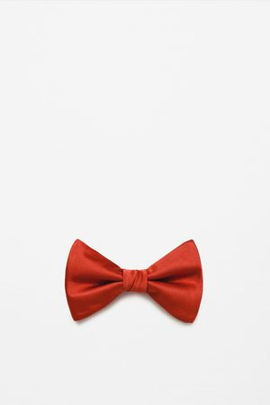 Zara Men Bow Ties - Basic bow tie