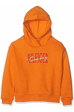 Tommy Hilfiger Girl's Essential Graphic Logo Hoodie (Russet 800)