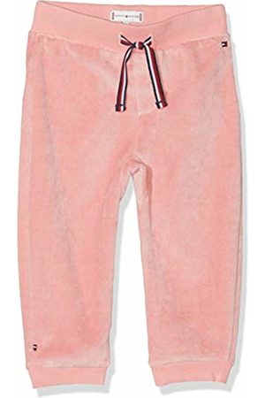 Tommy Hilfiger Baby Trousers - Boys' Baby Velours Sweatpants Trouser, ( Icing 639)