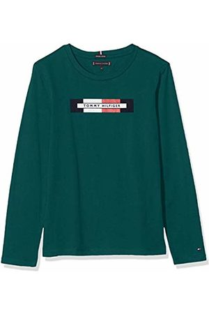 Tommy Hilfiger Boy's Essential Hilfiger Logo Tee L/s Long Sleeve Top