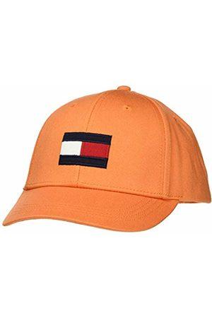 Tommy Hilfiger Baby Big Flag Cap