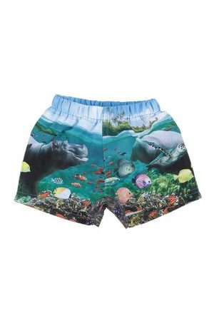 Molo SWIMWEAR - Swimming trunks