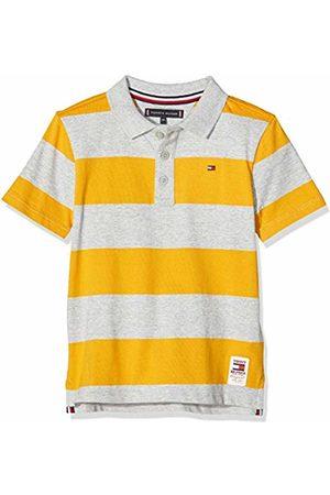 Tommy Hilfiger Boy's Wide Stripe Polo S/S Shirt