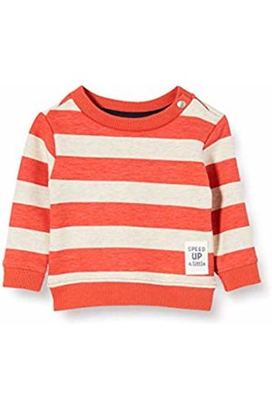 Noppies Baby Boys' B Sweater Ls Archdale AOP/str Sweatshirt