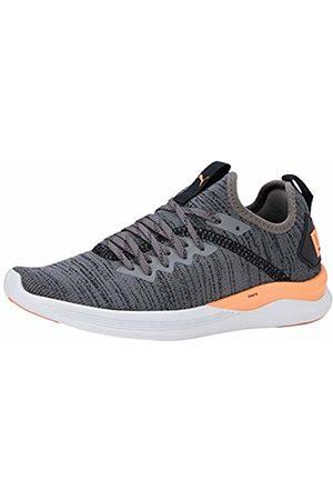 Puma Women's Ignite Flash Evoknit WN's Running Shoes, (Castlerock-Fizzy 22)
