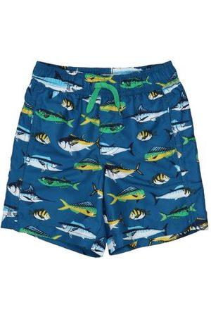 Hatley SWIMWEAR - Swimming trunks