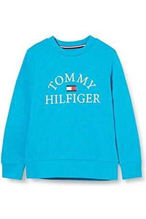 Tommy Hilfiger Boy's Essential Logo Sweatshirt