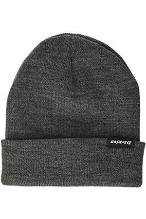 Dickies Men's Alaska Beanie HAT
