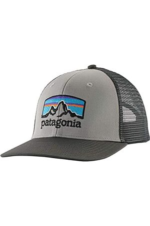 Patagonia Unisex_Adult Fitz Roy Horizons Trucker Hat Beret