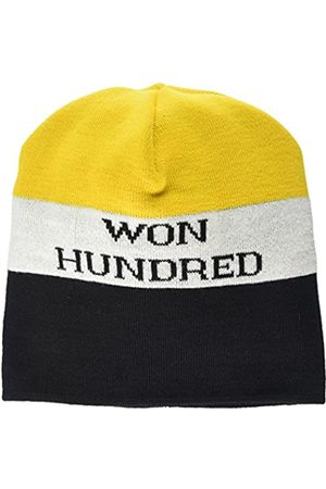 Won Hundred Men's Ilford Beanie