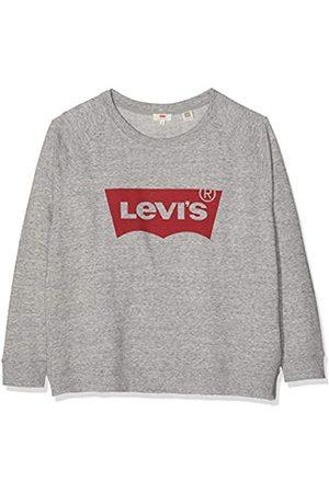 Levi's Women's Pl Relaxed Graphic Crew Sweatshirt