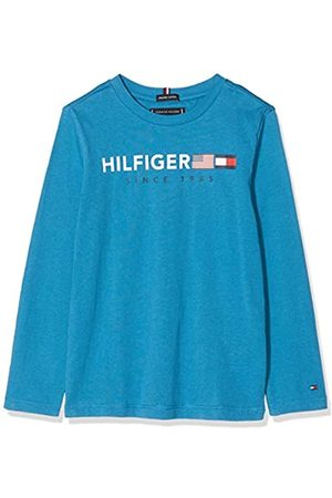 Tommy Hilfiger Boy's Flags Graphic Tee L/s T-Shirt