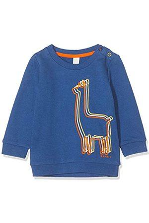 ESPRIT KIDS Baby Boys' Rp1502209 Sweatshirt