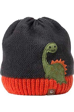 Giesswein Boys Beanie Ameisberg Dark ONE - Warm Knitted Beanie for Boys, Merino Wool, Soft Fleece Lining, Winter hat, Sweet Dino Application, Children's Beanie