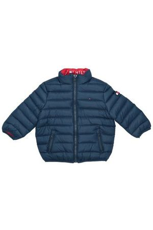 Tommy Hilfiger Baby Jackets - COATS & JACKETS - Down jackets