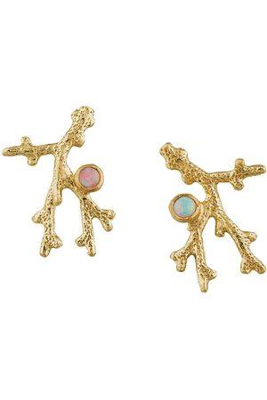 Alex Monroe 18kt yellow Coral Opal Branch stud earrings