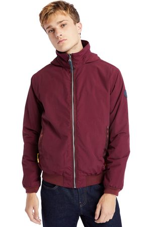 Timberland Mt lafayette bomber jacket for men in burgundy, size l
