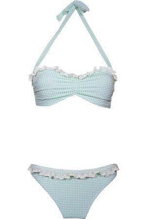 Hadley Smythe Phlox - Bikini