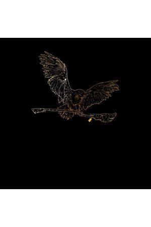 Harry Potter Hedwig Broom Gold Women's T-Shirt