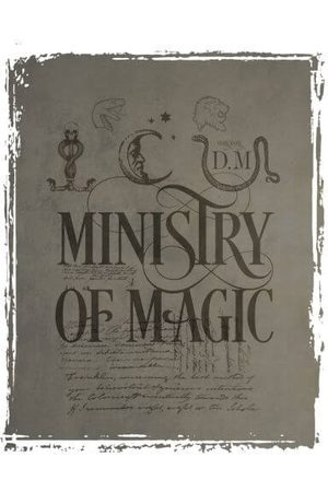 Harry Potter Ministry Of Magic Women's T-Shirt