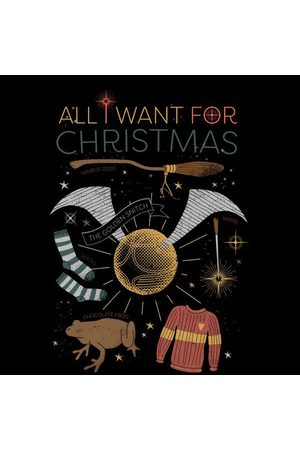 Harry Potter All I Want Women's Christmas T-Shirt