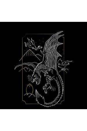 Harry Potter Hungarian Horntail Dragon Women's T-Shirt