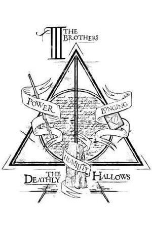 Harry Potter Three Dragons Women's T-Shirt