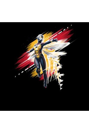 Marvel Ant-Man And The Wasp Brushed Women's Sweatshirt