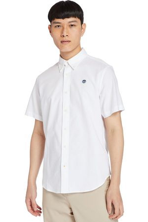 Timberland Gale river oxford shirt for men in , size 3xl
