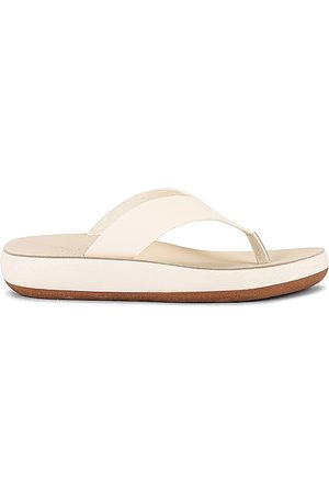 Ancient Greek Sandals Charys Sandal in . Size 38, 39, 40.