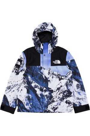 Supreme X The North Face mountain print parka