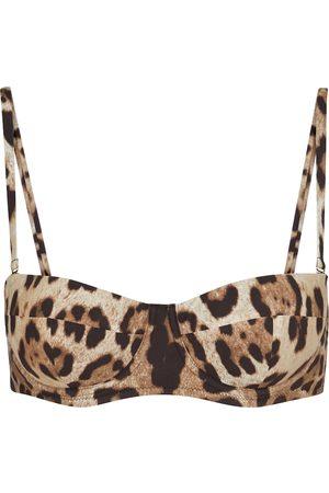 Dolce & Gabbana Leopard-print bikini top