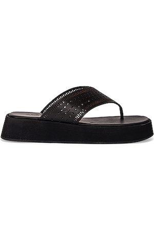 Alaïa Vienne Plastron Thong Sandals in Noir