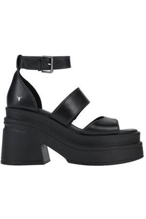Windsor FOOTWEAR - Sandals