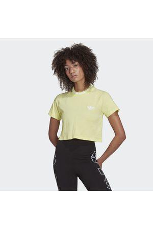 adidas Crop Top Rib T-Shirt