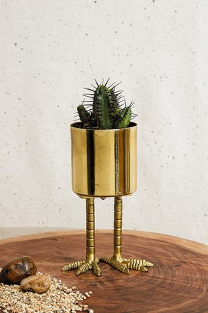 Urban Outfitters Mini Birdie Planter - ALL at