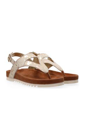 Maruti Bear Sandals Splash / Gold